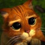 加菲猫qq头像图片大全 可爱的加菲猫图片卡通头像