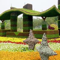 园林绿化头像