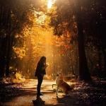 安静的头像图片唯美 高清安静的意境唯美图片头像