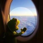 飞机窗口招手头像图片
