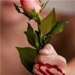 带刺的玫瑰图片流血头像 手握抓玫瑰刺手流血图片头像