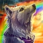 狼的微信头像图片大全 高清霸气凶猛的微信狼头像图片好看