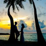 夕阳椰子树下情侣头像图片