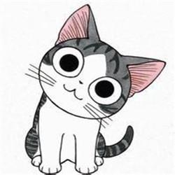 小奇猫图片头像
