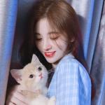 温柔元气女生抱猫头像图片