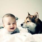 小孩与狗头像 超温暖的小孩和狗狗头像图片
