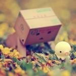 孤独寂寞伤感的qq头像图片,享受孤独