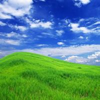 绿色微信头像唯美图片