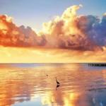qq头像沙滩唯美意境 绝美的qq头像风景唯美沙滩图片