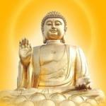 佛祖头像图片大全,佛祖动感图片头像