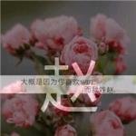 姓氏赵头像带字图片 唯美漂亮带赵字的图片头像
