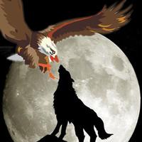 狼和鹰的拼搏图片头像