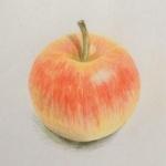 苹果画头像图片 画画的苹果图片头像很真实