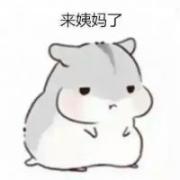 小仓鼠头像带字 超萌可爱的小仓鼠卡通图片配字头像