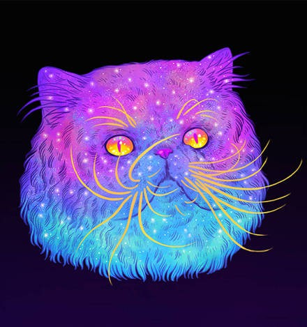 霸气猫咪头像