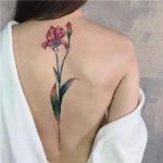 微信头像女背部纹身 花的图案唯美背部纹身头像女