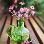 玻璃瓶插花图片头像 好看的小清爽玻璃瓶插花图片头像