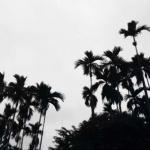 qq头像伤感风景 高清黑白伤感风景的头像图片