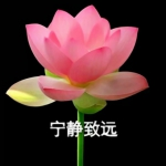 莲花头像带字图片大全 高清好看的带字莲花头像图片头像