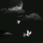 qq头像风景唯美黑白 高清夜晚的唯美黑白风景图片
