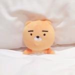 可爱布偶图片头像 高清床上睡觉的可爱布偶头像图片超萌