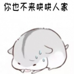 小仓鼠表情包头像带字图片
