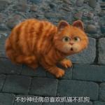 加菲猫可爱头像 超萌可爱的加菲猫高清头像精选
