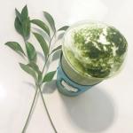 绿色系清新静物头像 高清小清新风格的绿色静物图片头像