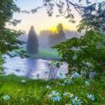 绿色唯美风景头像 高清唯美的清新绿色风景头像图片