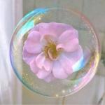 泡泡微信头像,高清梦幻仙气的清新唯美泡泡头像图片