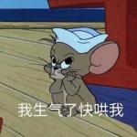 猫和老鼠带字搞笑图片头像 高清可爱汤姆和杰瑞带文字的图片头像