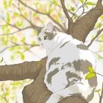 猫咪插画手绘小清新头像,高清超萌的手绘清新猫咪插图片头像