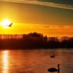 夕阳微信头像,高清好看的夕阳头像唯美风景图片