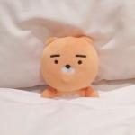 可爱玩偶头像图片,爱睡觉的玩偶图片大全可爱头像