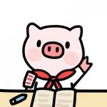 猪可爱萌头像大全 高清可爱的猪的图片头像