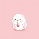甜兔酱头像 高清可爱超萌的甜兔酱图片头像
