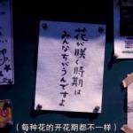 日系文字头像 高清日系的静物风景图片头像带字