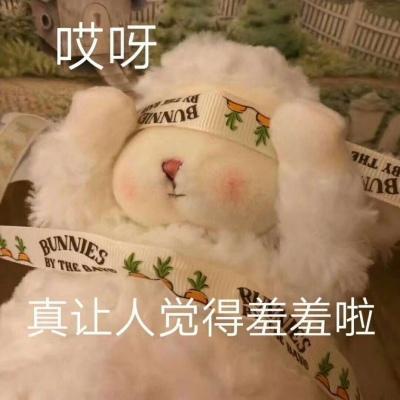 小绵羊卖萌头像