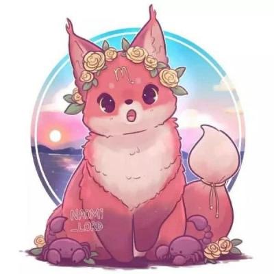 狐狸星座头像