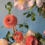 花朵鲜花风景静物头像唯美图片大全