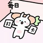 每日打卡头像 高清可爱的今日打卡兔子卡通图片头像