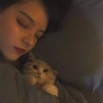 高清一男一女带猫情头图片