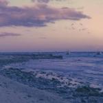 可做头像的风景静物图片 简约风格