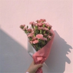 鲜花头像微信图片,高清好看的鲜花头像唯美图片精选