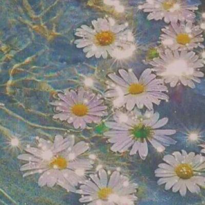 微信头像清新花朵