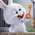 爱宠大机密小白兔头像,超萌可爱的宠物大机密兔子头像高清图片