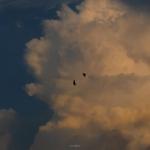 微信头像风景云,高清清新好看云的头像图片风景