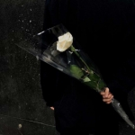 手捧着一朵花的图片头像