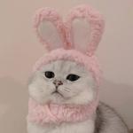 情侣猫咪头像超萌情头高清图片