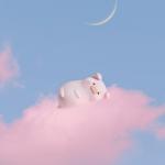 粉色系小猪头像 高清清新可爱治愈系粉色呆萌猪头像图片